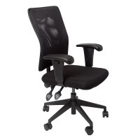 Caprice Chair, Black Mesh Back