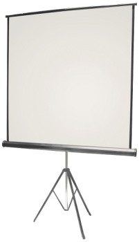 Free standing projection screen