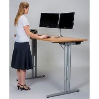 Rize Electric Height Adjustable Desk