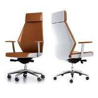 Director Executive Chair, Front and Rear View