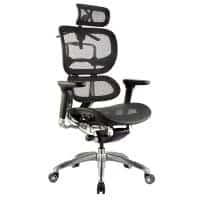 Chicago Ergo Chair